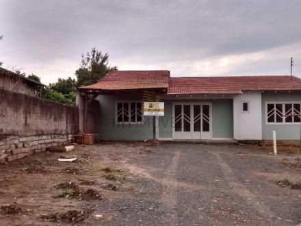 Casa, Girassol- Ituporanga - Ituporanga/SC, girassol