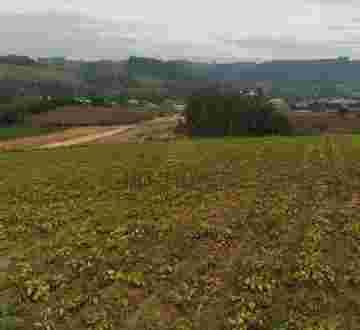 Terreno agrícola - Ituporanga. - Ituporanga/SC, Faxinal Vila Nova