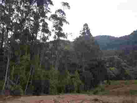 TERRENO - RIO DOS BUGRES - ITUPORANGA/SC - Ituporanga/SC, Rio dosBugres